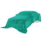 car with teal unveiling cloth