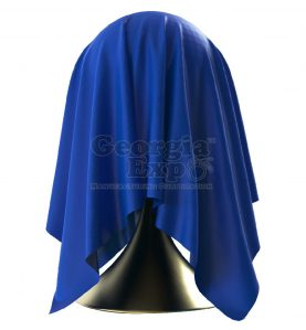 Unveiling Cloth Statue Blue