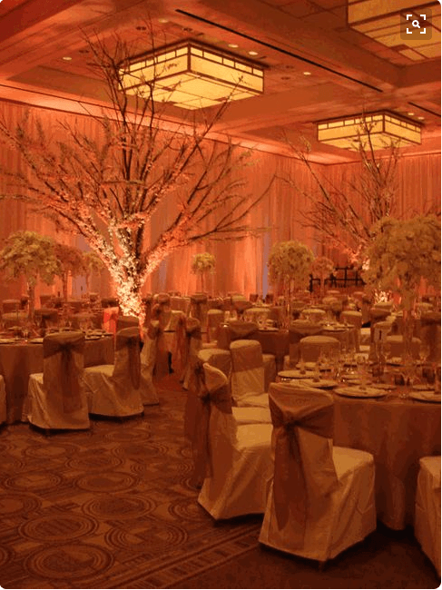 4 Amazing Tips To Enhance Your Wedding With Pipe And Drape