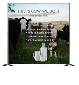 This-Is-Cow-We-Do-It--Backdrop_10x10