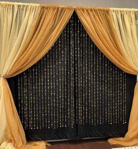 PICTURE PERFECT PHOTO BACKDROP